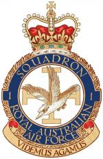 VRS Superbug RAAF i Squadron Textures