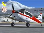 Bellanca Scout Package