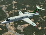 LEAR-45 Alitalia Textures