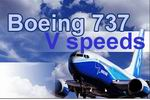 FS2004                   Boeing 737 V Speeds Calculator 4.0.