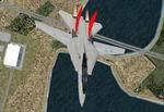 FS2002                   Grumman F-14 'Hassey' (fictional)
