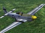 CFS2               FDG P-51D Mustang Jane's WWII Fighters textures only