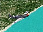 RAAF No77 -Lou