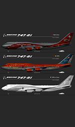 Boeing 747-8 part 1