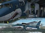 DHC-6