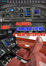 FSXA Piper PA-28 Warrior V.2 Upgrade Textures Pack