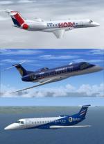 FSX/P3D Embraer ERJ-135 FSX Repaint Pack 2