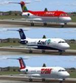Fokker-28  para FS2004 e FSX.