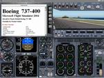 FS2004                   Manual/Checklist -- Default Boeing 737-400