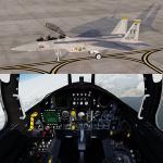 FSX/P3D Iris F-15D package FSX native USAF Pack 1