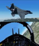 FSX/P3D Iris F-15 package FSX native USAF Pack 5