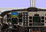 Beech